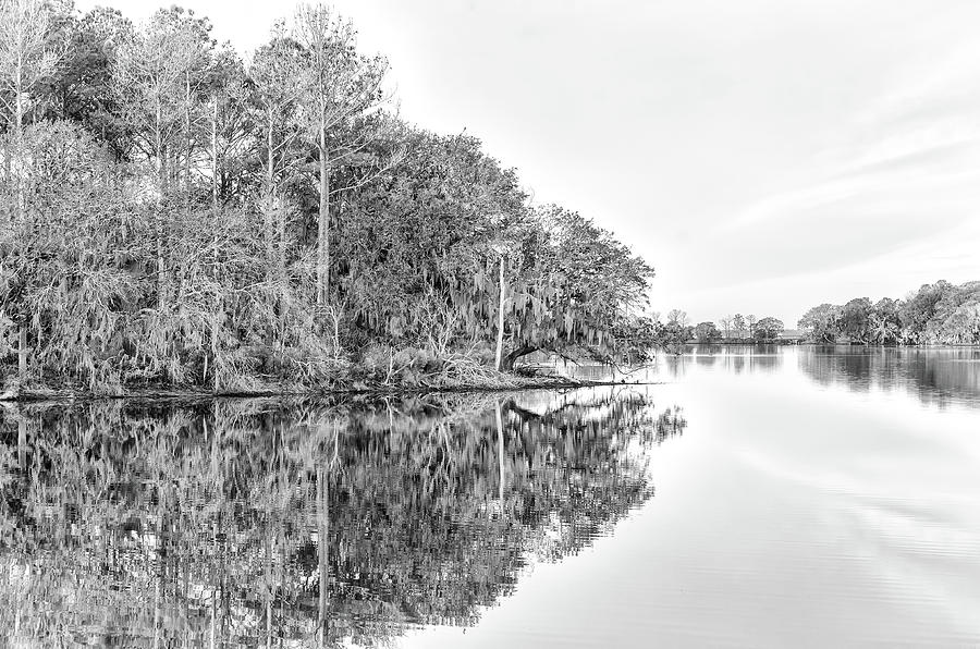 The Point at Coosaw Plantation by Scott Hansen