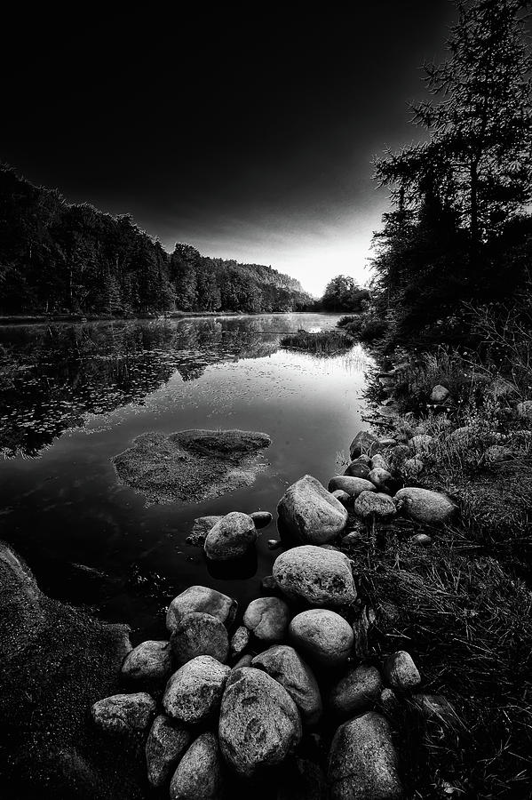 The Pond at Dusk by David Patterson