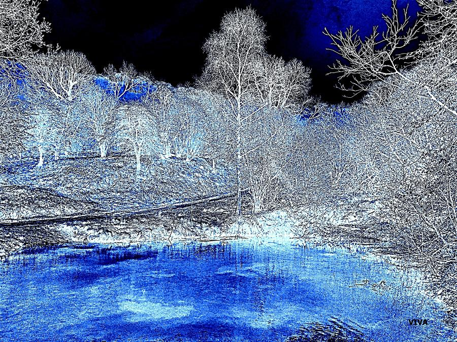 The  Pond in  Winter  -  EDIT20-contest by VIVA Anderson