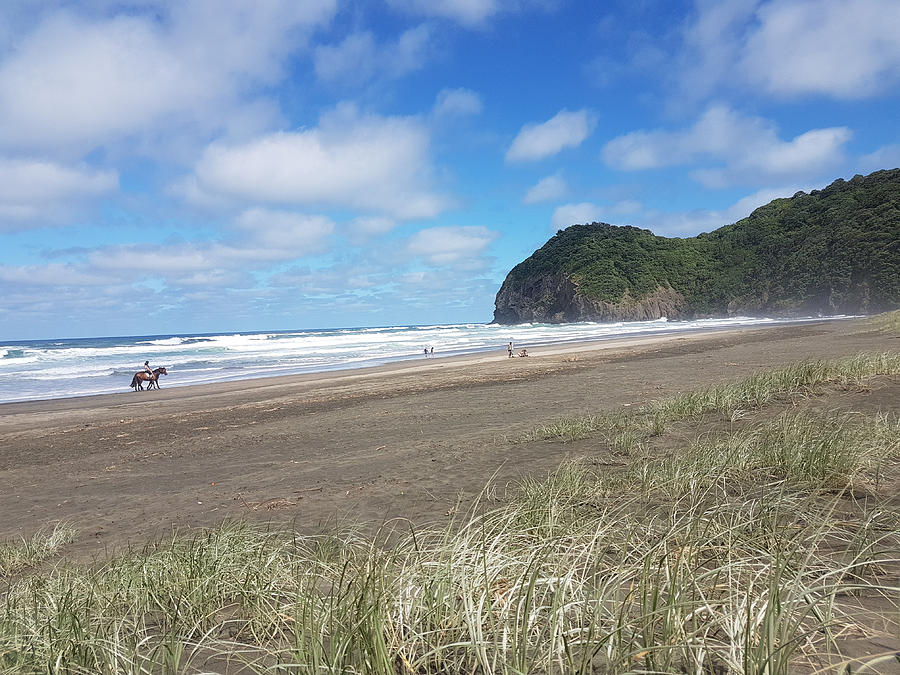 The Ponies Love The Piha Surf by Clive Littin