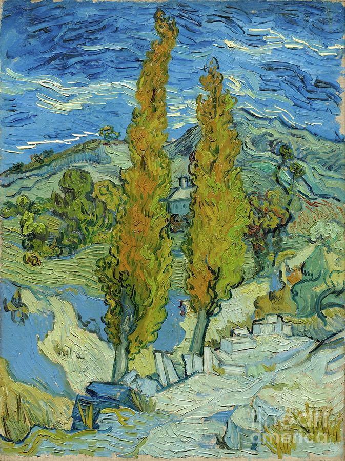 The Poplars At Saint-rémy Drawing by Heritage Images