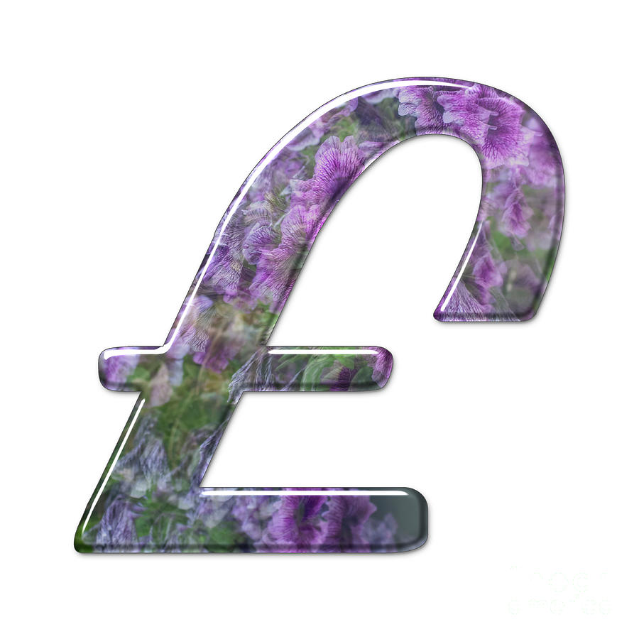 The Pound Currency Symbol J