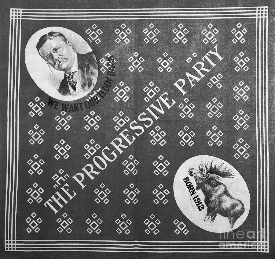 The Progressive Party Election Banner Photograph by Bettmann