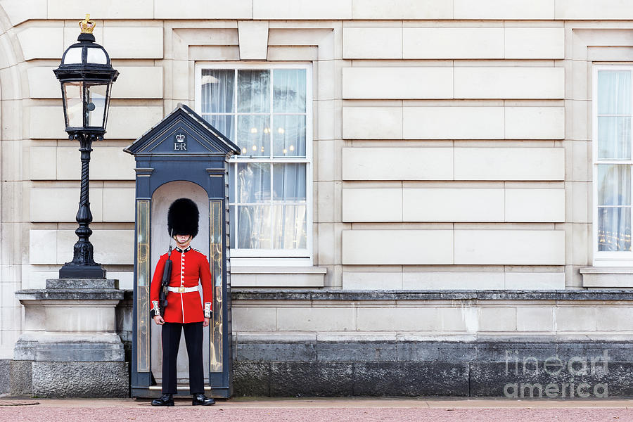 The Queens Guard Photograph by Taseffski