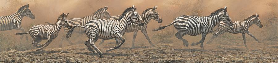 The Race - Zebras by Alan M Hunt