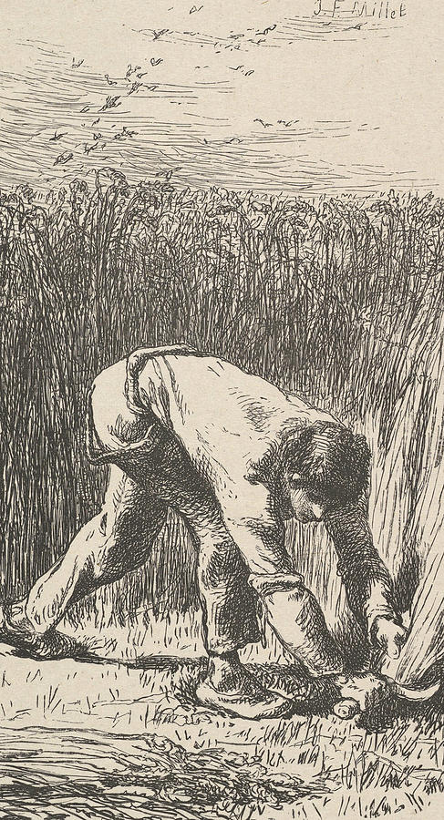 The Reaper by Jean-Francois Millet