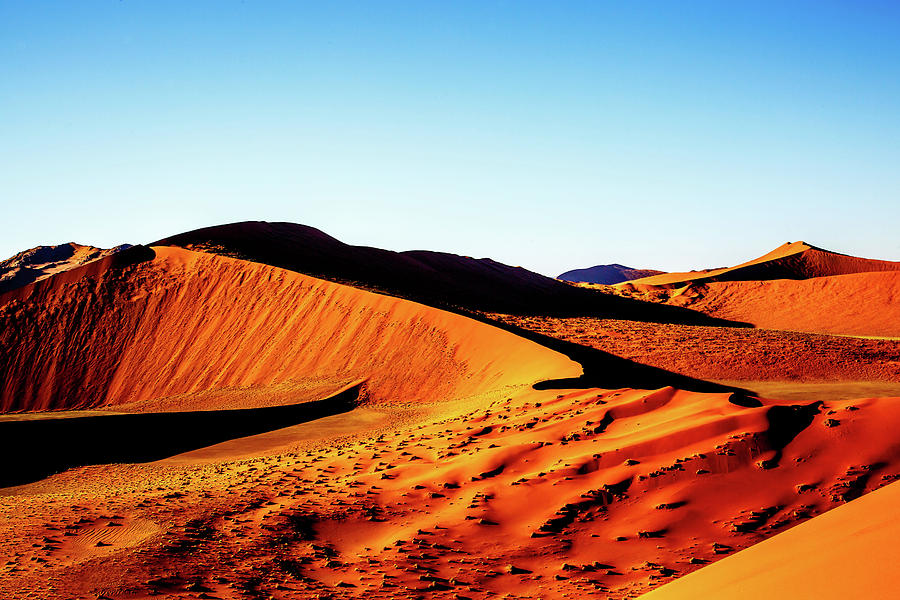 The Red Dunes of Soussesvlei by Gary Hall