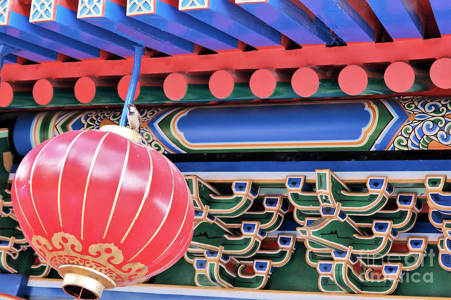 The Red Lantern Photograph