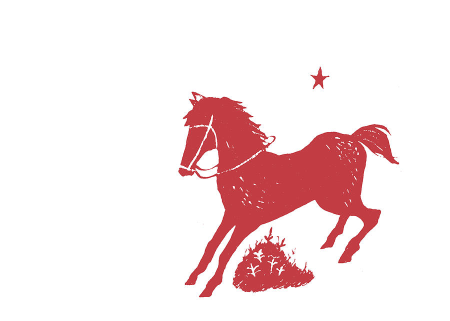 THE RED PONY by Dressage Design