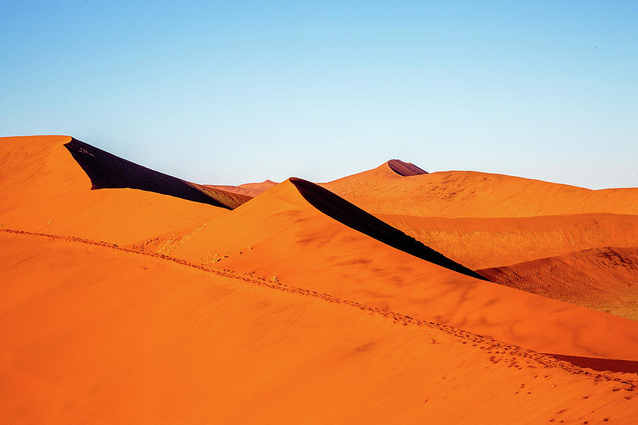 The Red Sands of Soussesvlei by Gary Hall