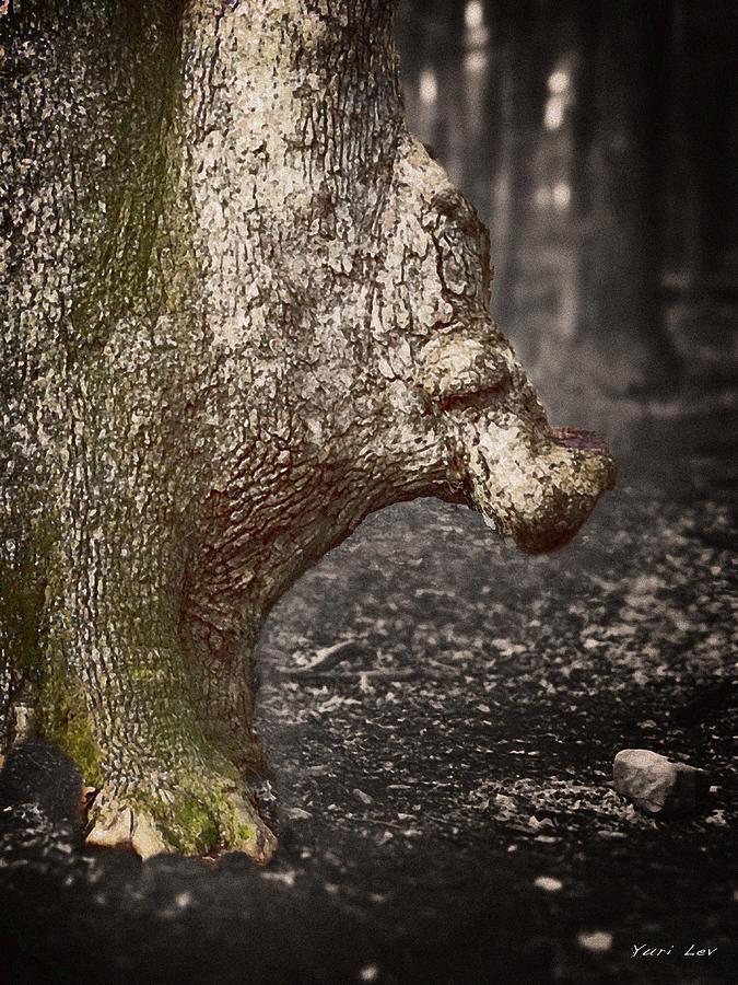 The Rhinoceros Tree Mixed Media