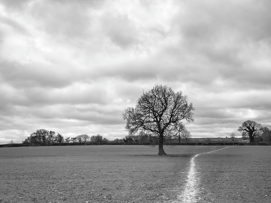 The Right Path by Nick Bywater
