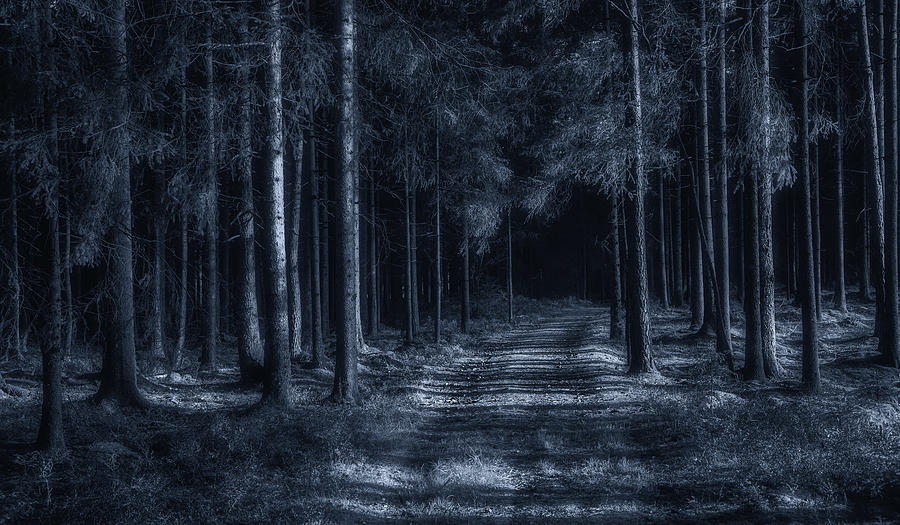Surreal Photograph - The Road To Lucifer by Benny Pettersson