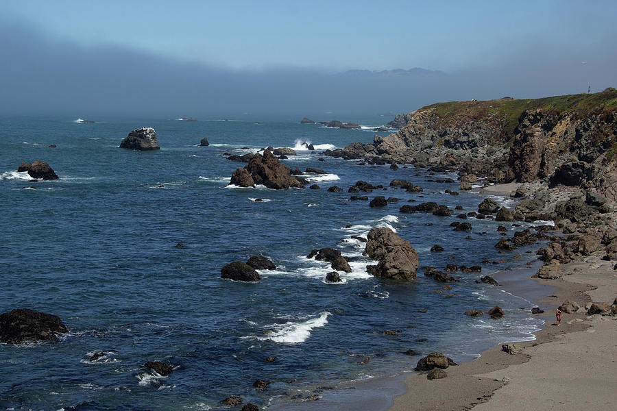 The Rocky Sonoma Coast by Marie Leslie