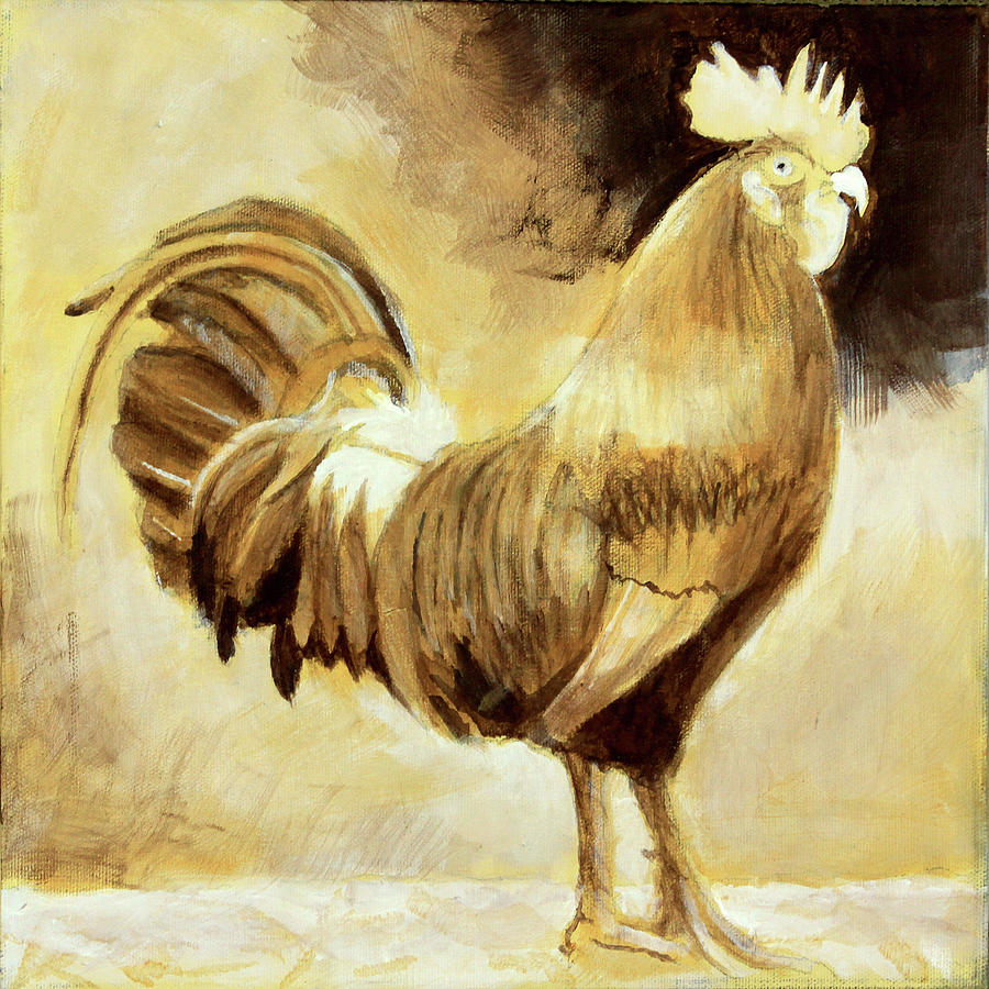 The Rooster  drawing by David Zimmerman