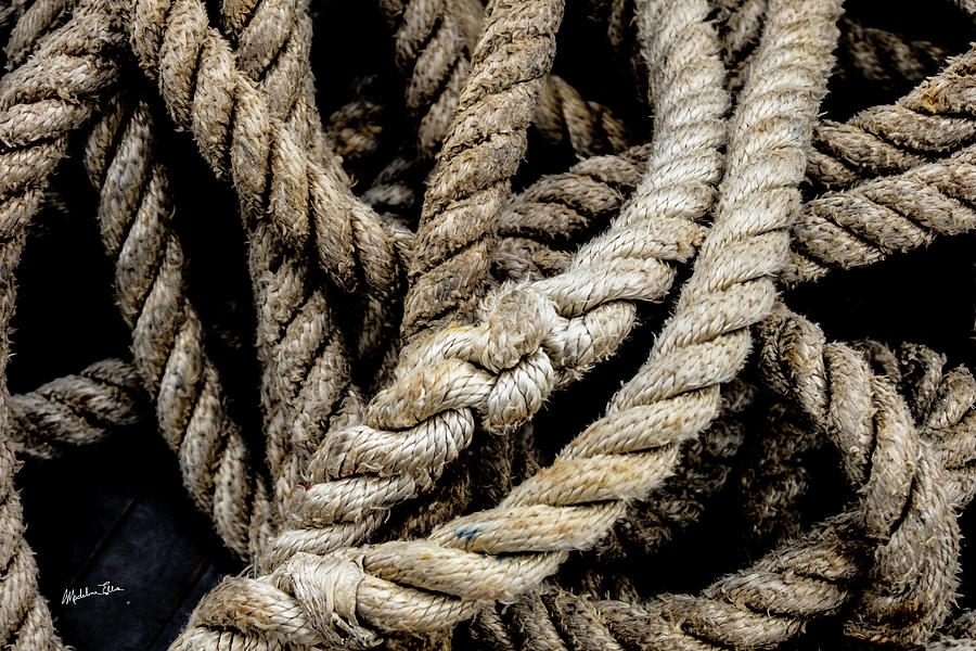 Rope Photograph - The Rope by Madeline Ellis