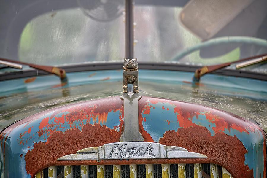The Rusty Bulldog by Rick Berk