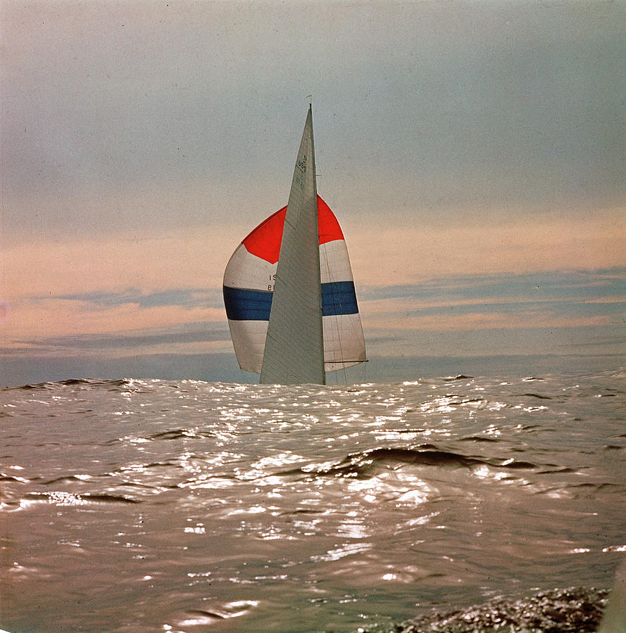 The Sailboat Nefertiti Competing In The Photograph by George Silk