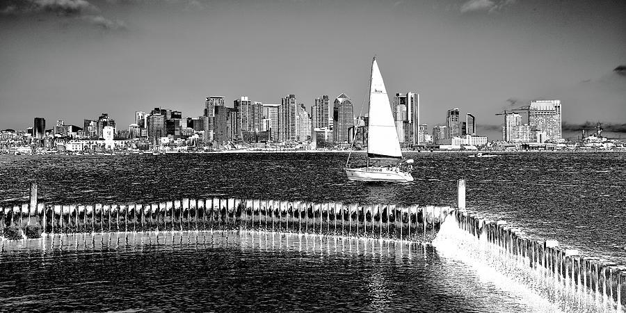 The San Diego Skyline by David Patterson