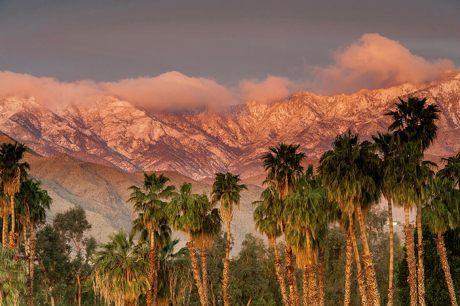The San Jacinto And Santa Rosa Mountain Photograph by Danita Delimont