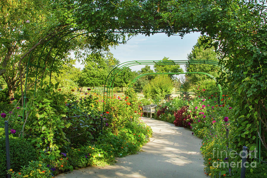 Garden Design Photograph - The Scent Of Monet by Marilyn Cornwell