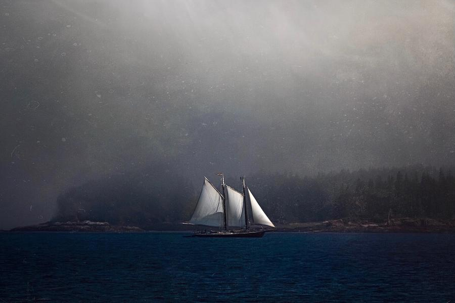 The Schooner by Caroline Jensen