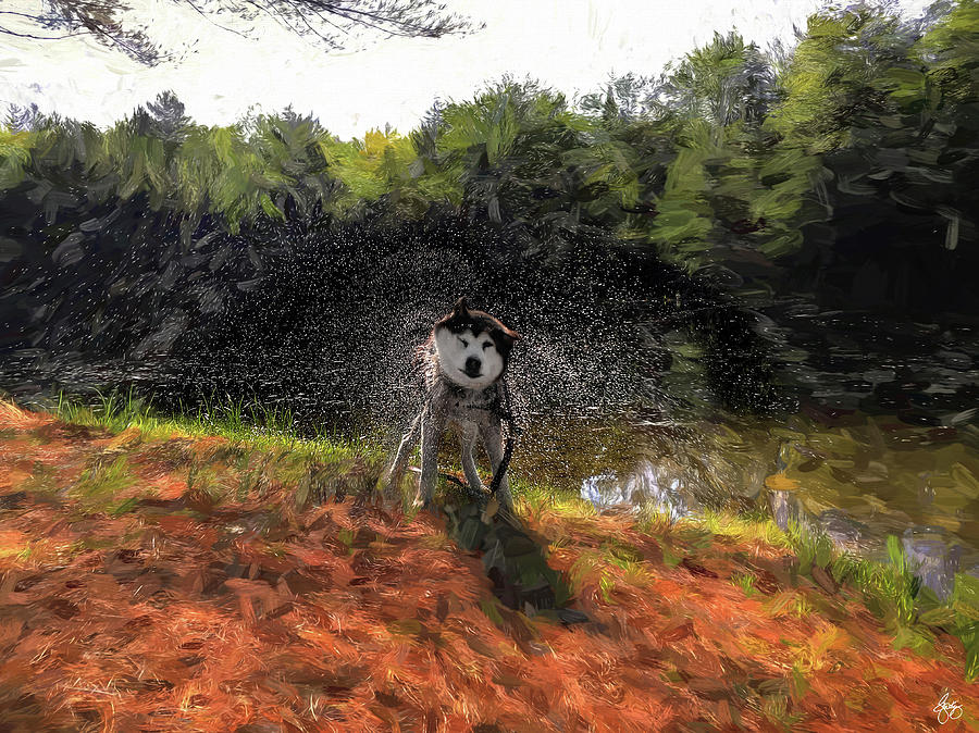 The Shake by Wayne King