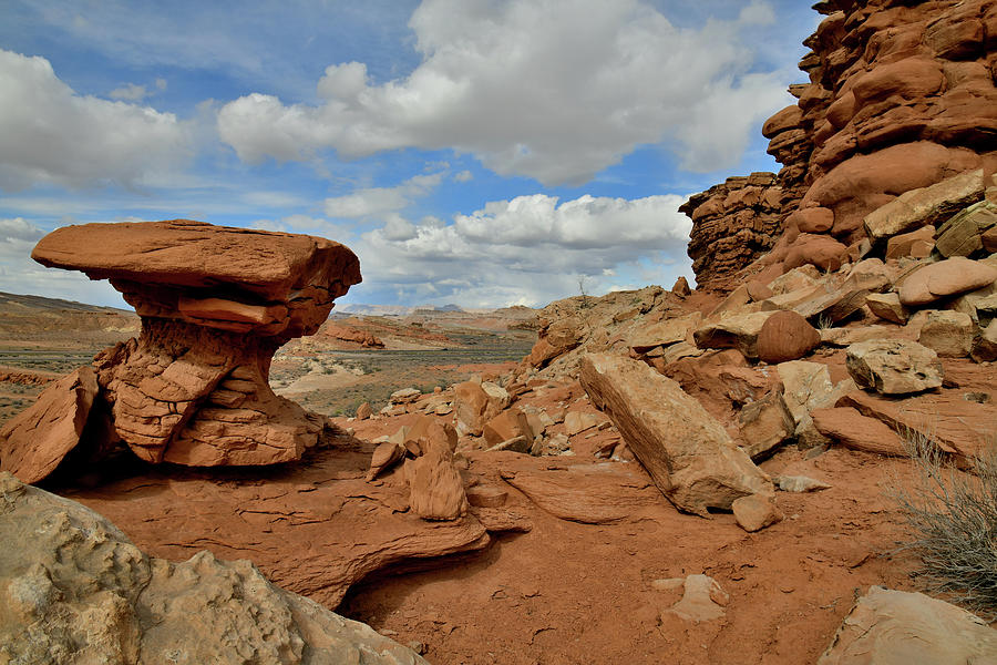 The Shapes of San Rafael Desert in Utah Photograph by Ray Mathis
