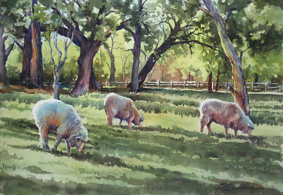 The Sheep's in the Meadow... by Sue Zimmermann