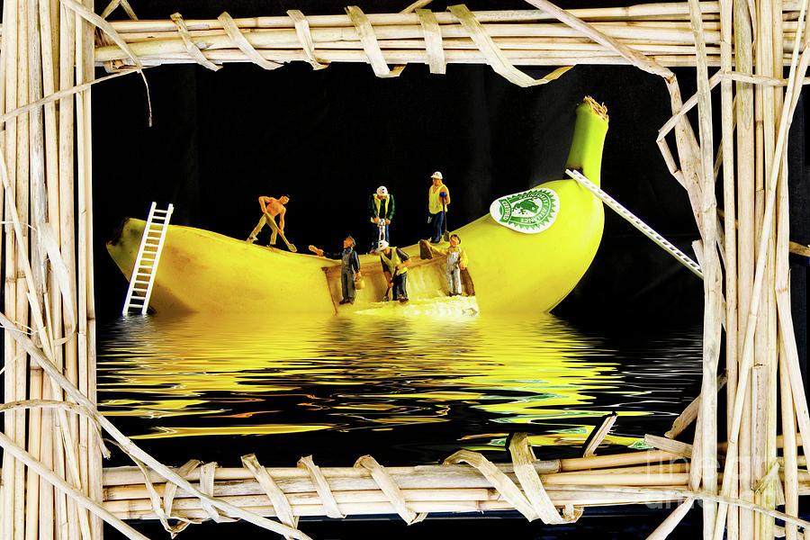 The Sinking Of The SS Banana by Sandra Cockayne ADPS