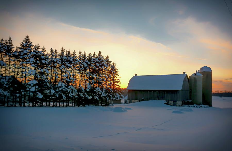 The Softness of Winter by Patti Raine