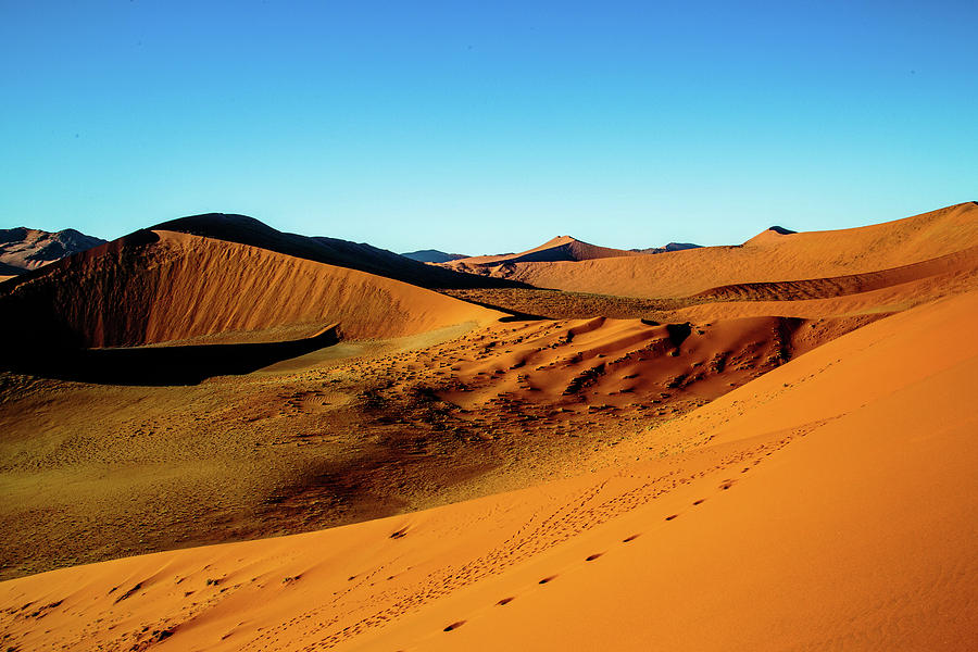 The Soussesvlei Dunes 2 by Gary Hall