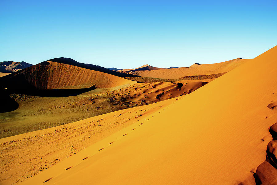 The Soussesvlei Dunes by Gary Hall