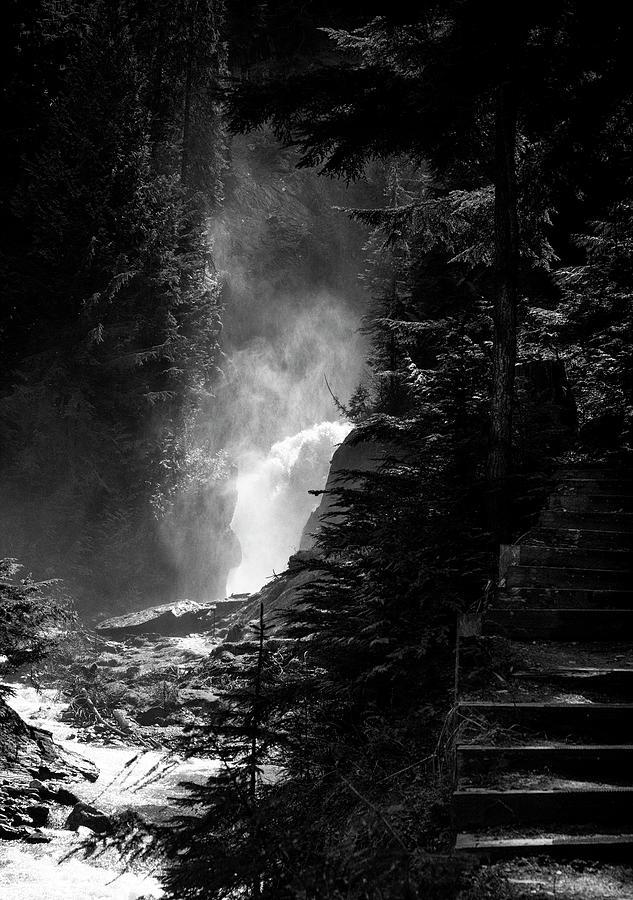 The Stairs At Bear Creek Falls Photograph