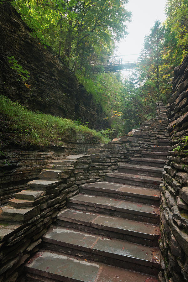 The Stone Stairways of Watkins Glen by David Lamb