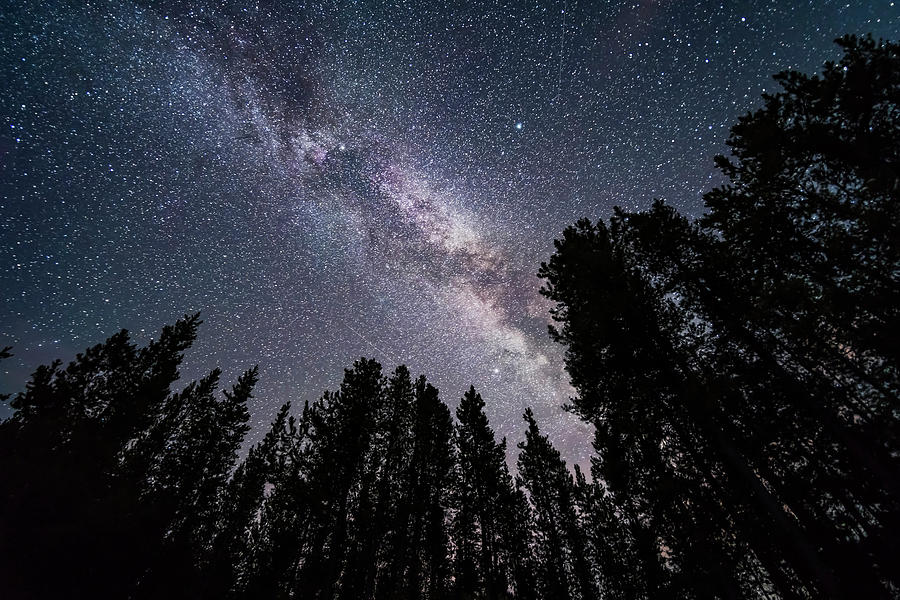 Altair Photograph - The Summer Milky Way Looking by Alan Dyer