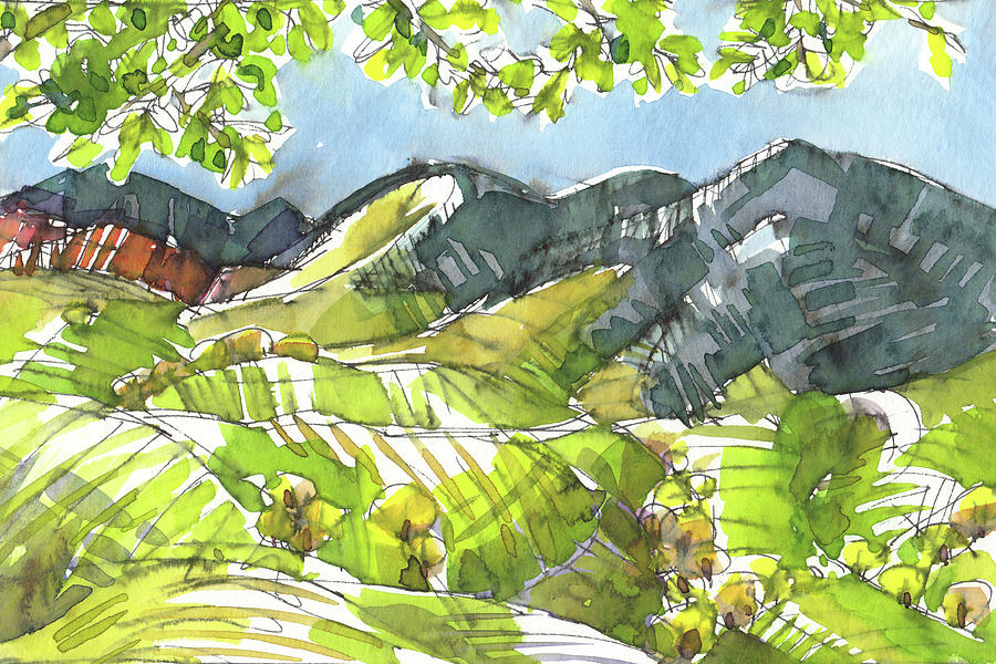 The Sun Shines Green by Judith Kunzle