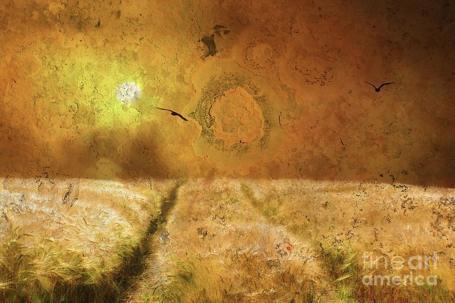 The Sun's Harvest by Marcia Lee Jones