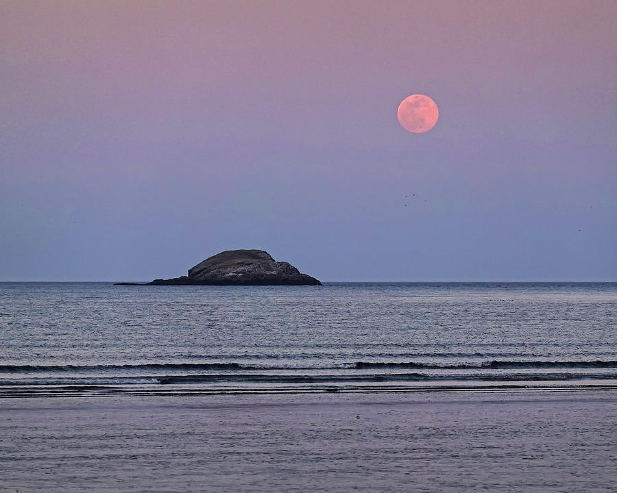 The Super Worm Moon 2019 over Egg Rock in Nahant MA by Toby McGuire