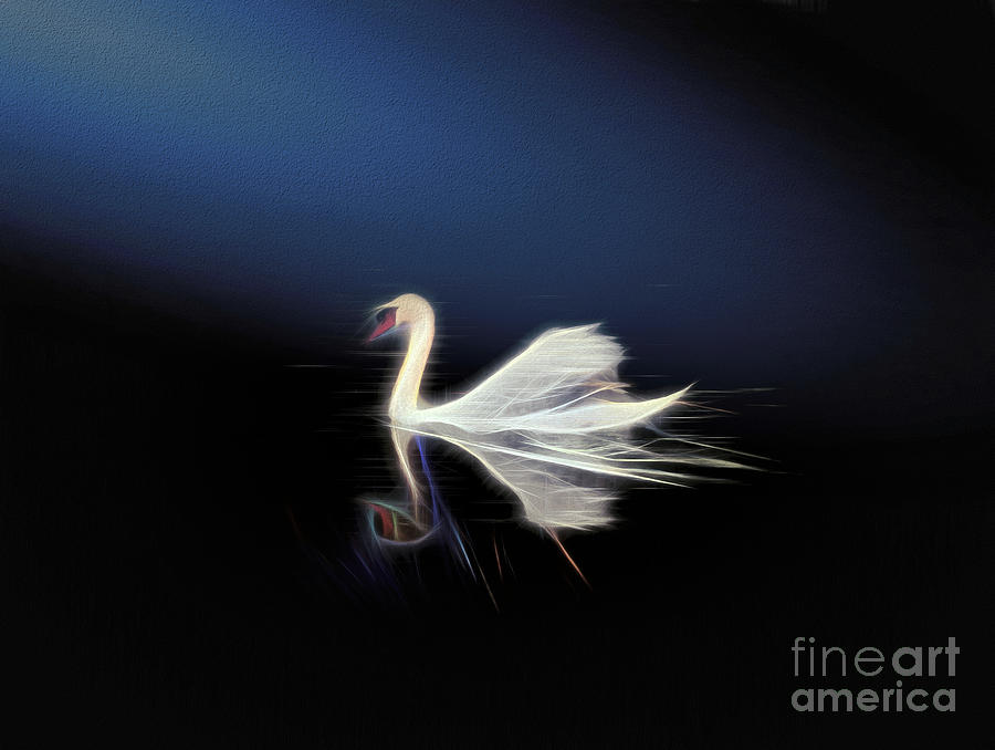 Swan Photograph - The Swan by Leigh Kemp