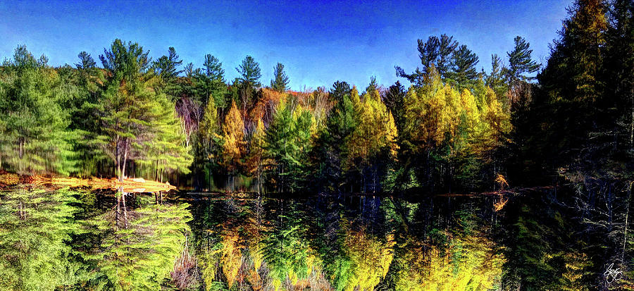 The Sweep of Autumn by Wayne King