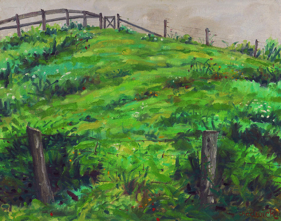 The Tangled Pasture by Phil Chadwick