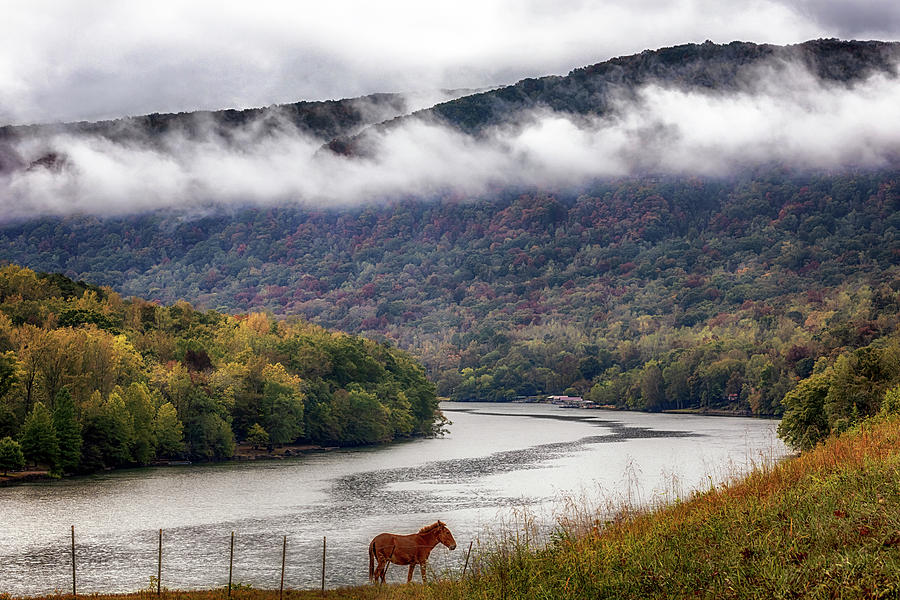 The Tennessee River Gorge by Susan Rissi Tregoning