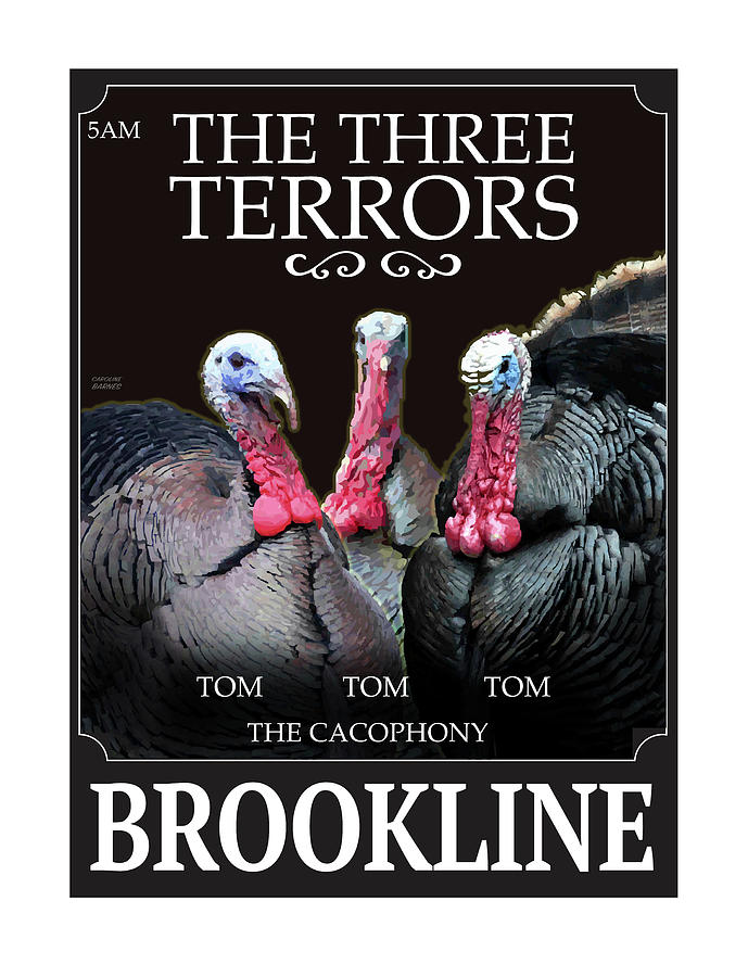 The Three Terrors by Caroline Barnes