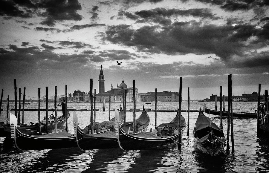 The Tones of Venice by Mary Buck