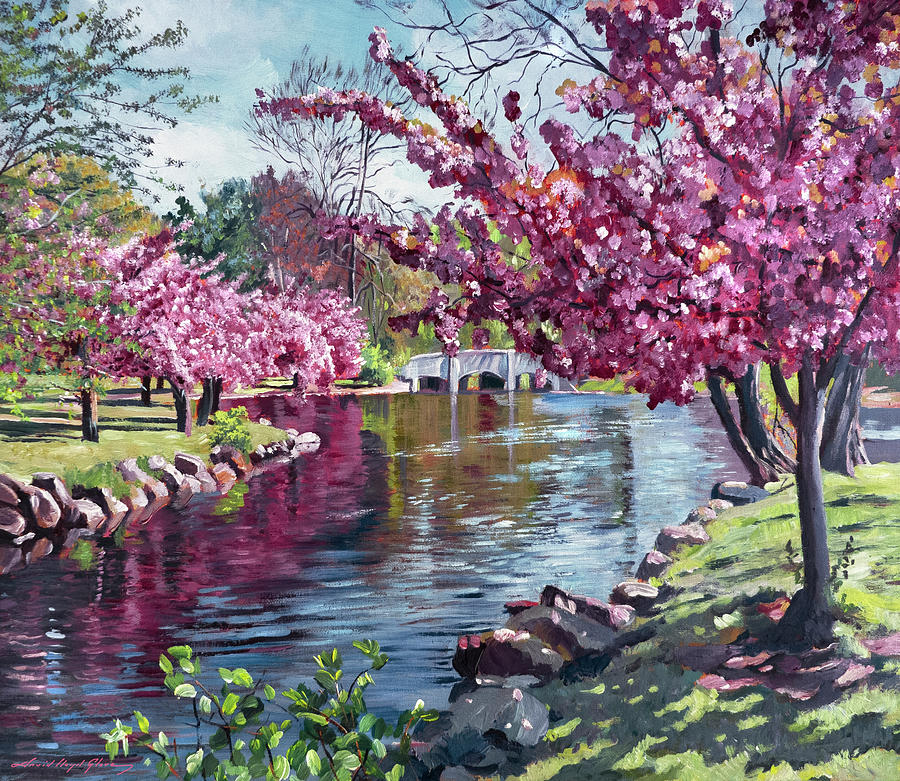 THE TREE BLOSSOM REFLECTIONS by David Lloyd Glover