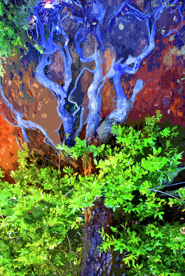 The Tree of Life by Ben Upham III