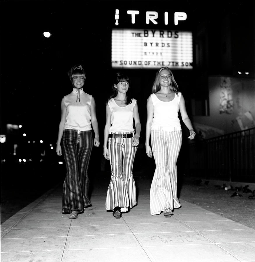 The Trip Photograph by Michael Ochs Archives