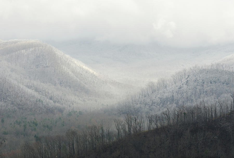 The Valleys Of Mount Leconte Photograph