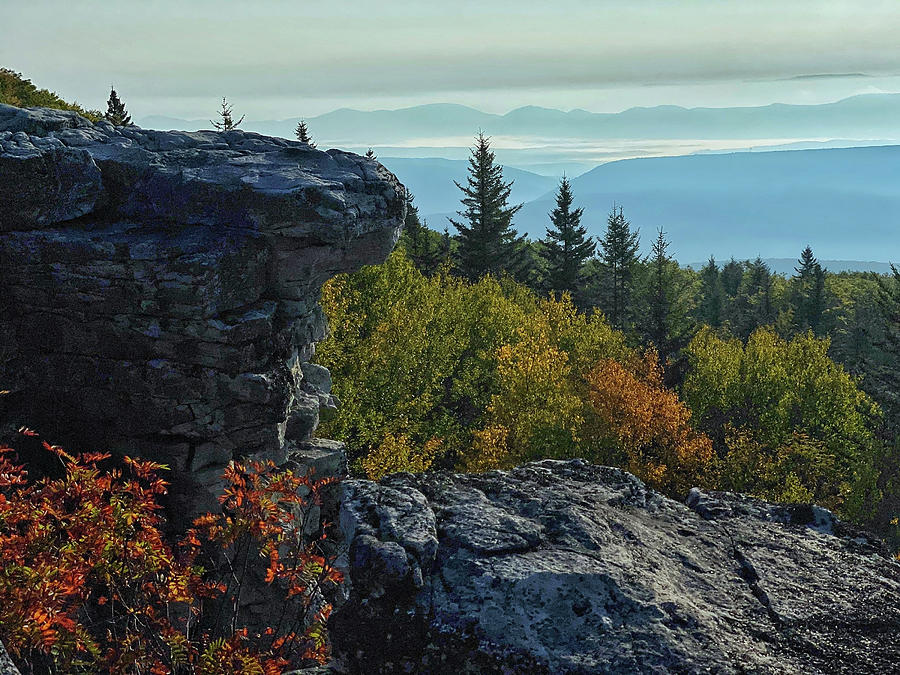 The View from Bear Rocks by Lori Coleman